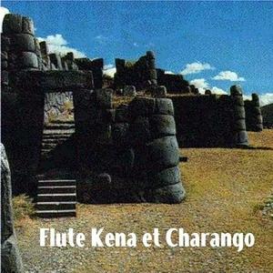 Andes Flute Kena Et Charango