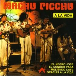 "Machu Picchu ""A La Vida"""
