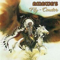 "Amawa's ""Fly-Condor"""