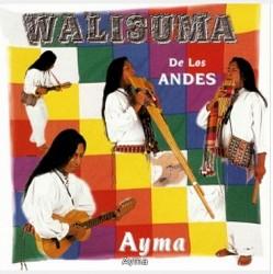 Walisuma De Los Andes Ayma